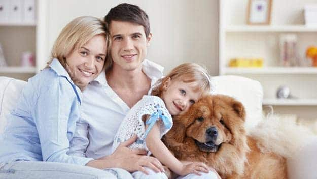 Wills & Trusts dog-young-family Direct Wills Canning Town